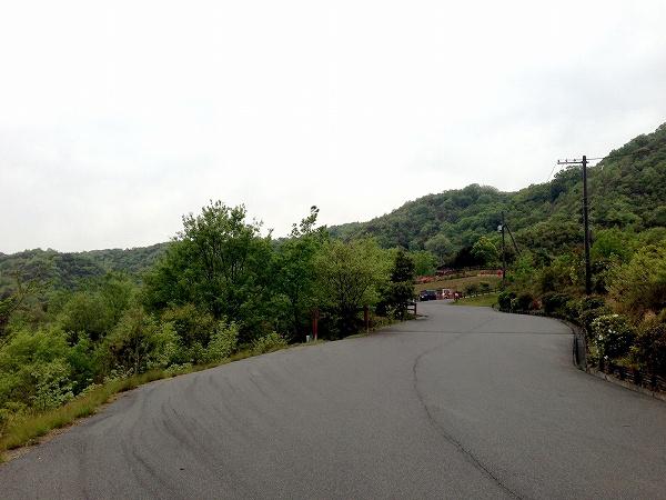 倉敷美しい森